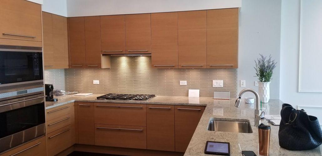chicago-condominium-remodeling-2020-proonebuilders-2